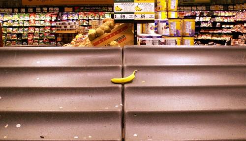 たった一本のバナナ