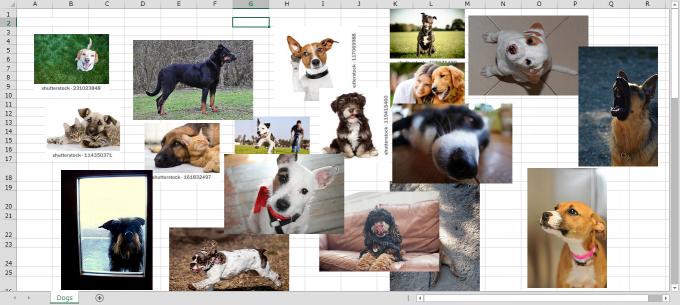 犬画像が大量のエクセルシート