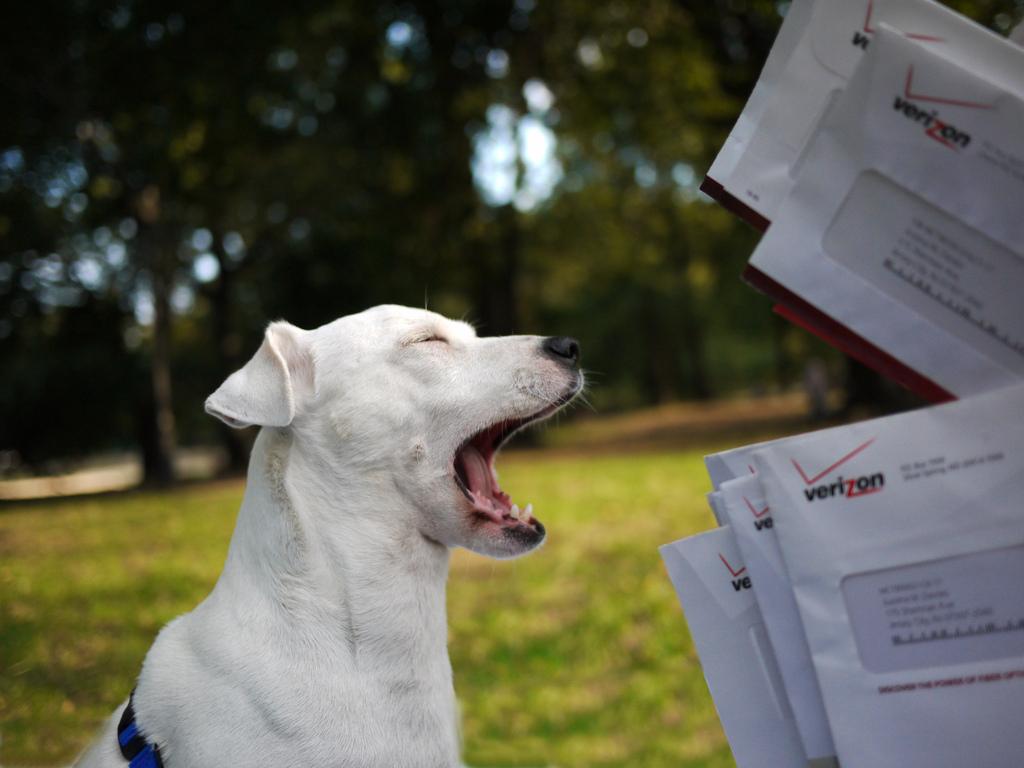 mail-magazine